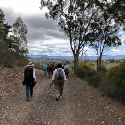 between Mt Sheaffe and Mt Mugga Mugga 26 September 2018 Singleton