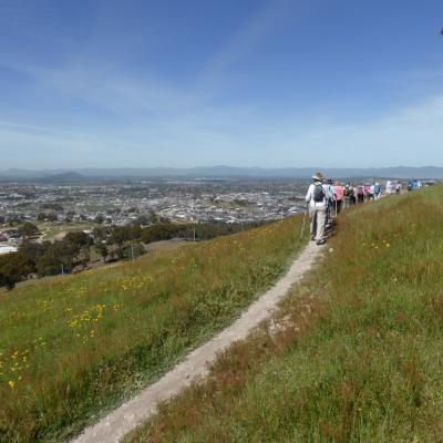 Canberra Centenary Trail on Northern Border section, 31 Oct 2014