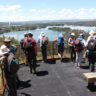 Black Mountain Bushland Nature Walk lookout, 30 November 2017