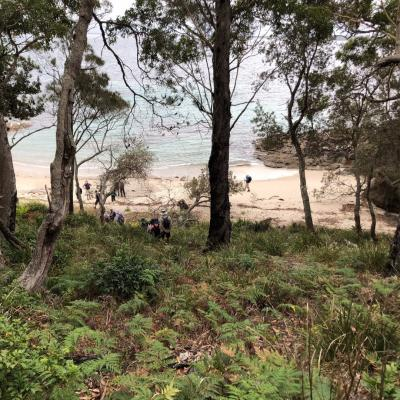 Kittys Beach Booderee National Park 13 March 2019 Singleton IMG 3049 Large