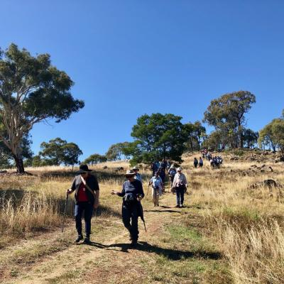 Pinnacle Nature Reserve 27 March 2019 Singleton IMG 3329