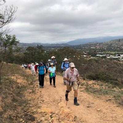 Tuggeranong Hill 19 April 2019 Singleton IMG 3549