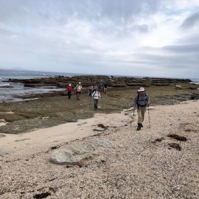 Wreck walk at Abrahams Bosom Reserve Currarong 14 March 2019 Singleton IMG 3080 Large