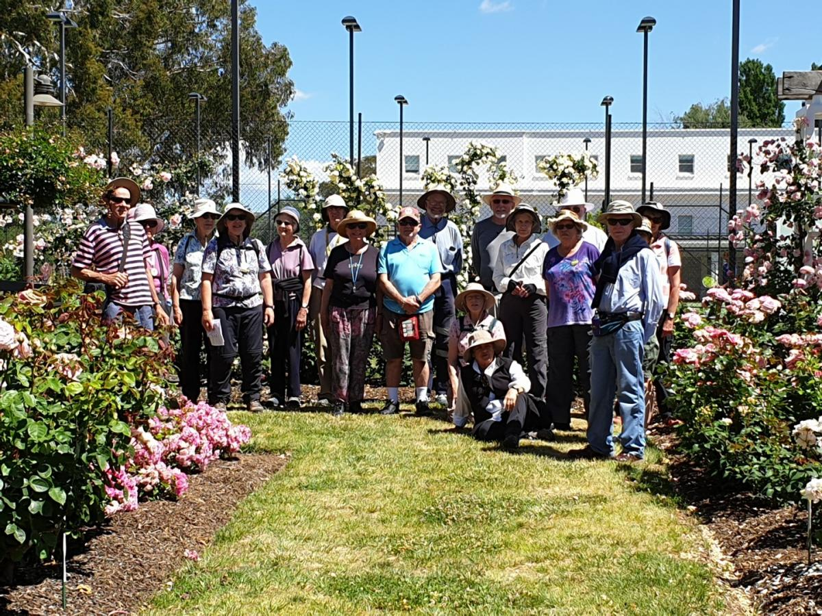 Old Parliament House Rose Garden 17 November 2019 Hubbard 20191117 110430