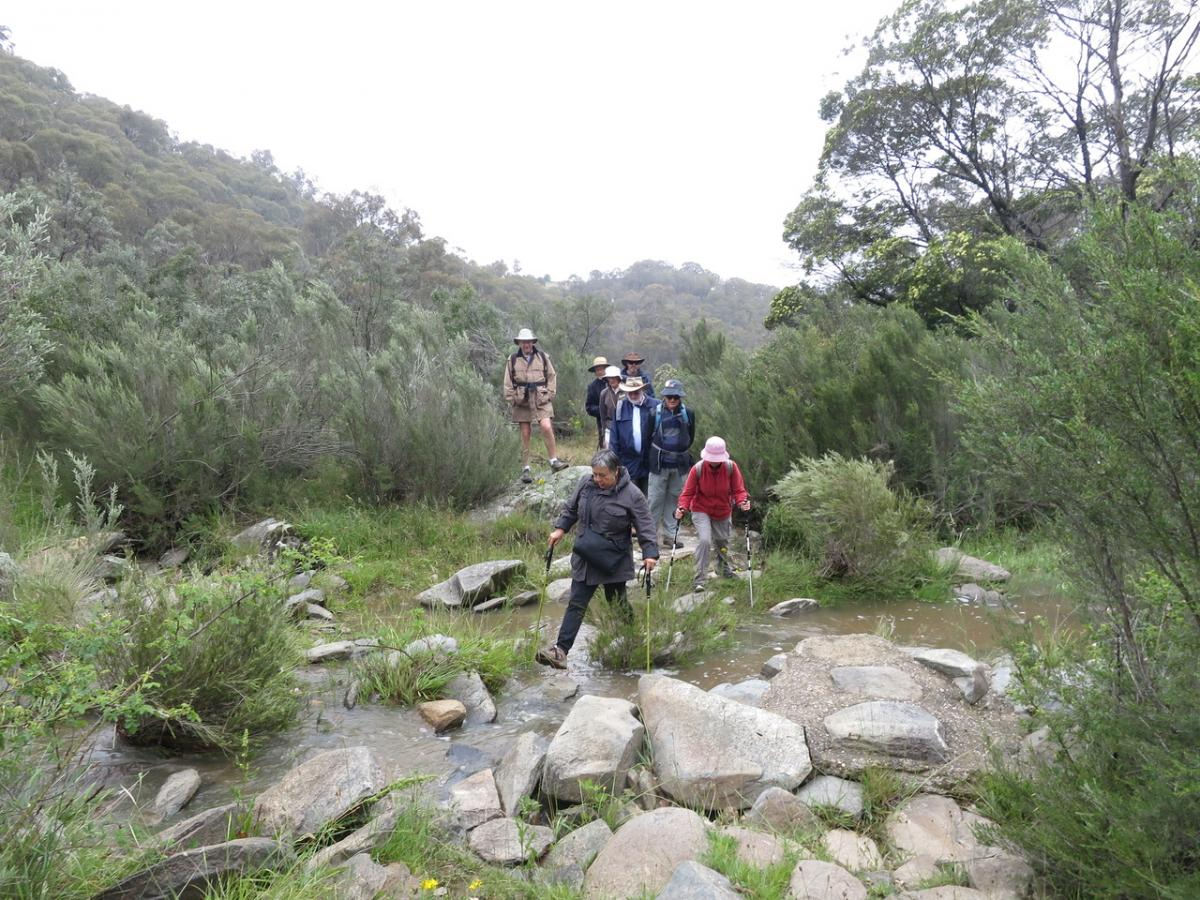 Walking in the mist at Googong Reservoir, 3rd December 2017